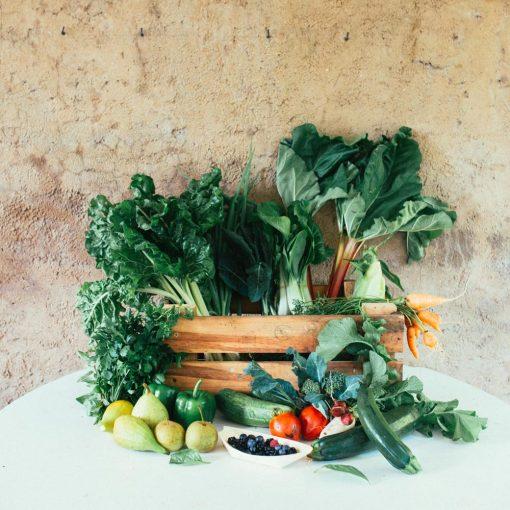 csa-harvest-farms-box-web